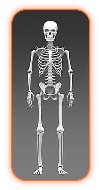 Skeleton-Hygiene